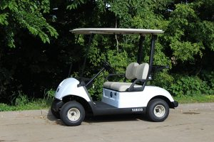 Rental 2 Passenger Golf Car