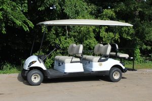 Rental 6 Passenger Golf Car