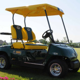 Wisconsin Packers Custom Golf Car by Harris Golf Cars