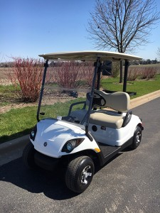 2012 electric pearl golf cart-Harris Golf Cars-Iowa, Illinois, Wisconsin, Nebraska