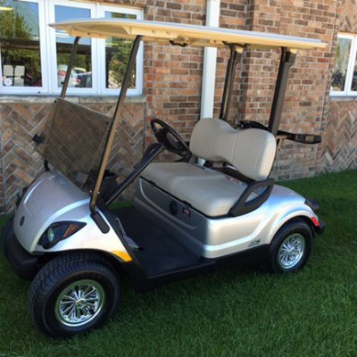 moonstone electric golf car-Harris Golf Cars-Iowa, Illinois, Wisconsin, Nebraska