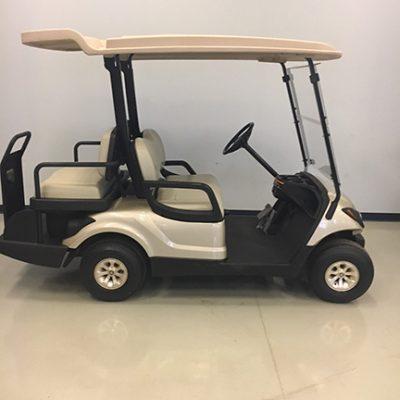 2014 EFI Sandstone Golf Car-Harris Golf Cars- Iowa, Illinois, Wisconsin, Nebraska