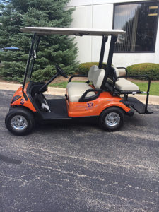 2011 Custom Chicago Bears-Harris Golf Cars-Iowa, Illinois, Wisconsin, Nebraska