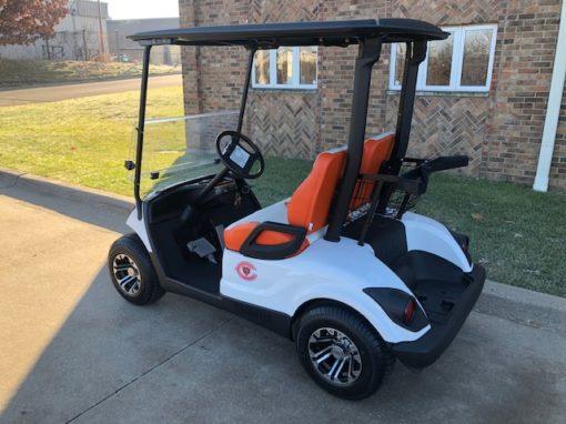 2011 Chicago Bears Golf Car