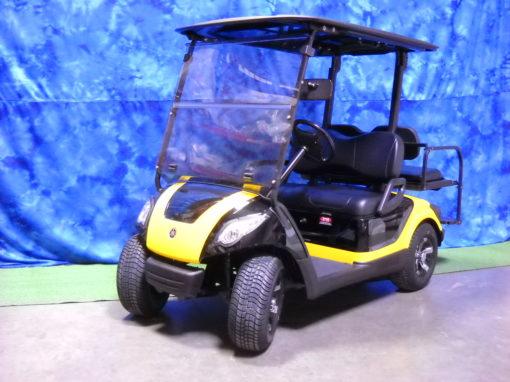 2009 Black and Golf Golf Car